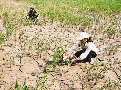 Cảnh báo mất nước cục bộ ở một số quận, huyện ở Hà Nội