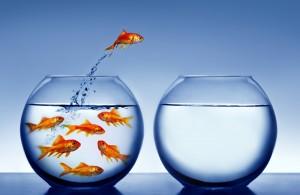 Nguyên tắc giúp đổi mới của bạn bền vững
