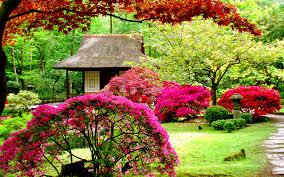 Khoảng sân vườn đầy màu sắc
