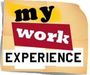 Kinh nghiệm công việc