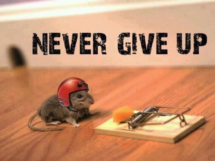 Đừng từ bỏ hy vọng.