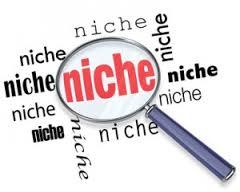 Cách kiếm tiền bằng Niche Site cực kỳ hiệu quả