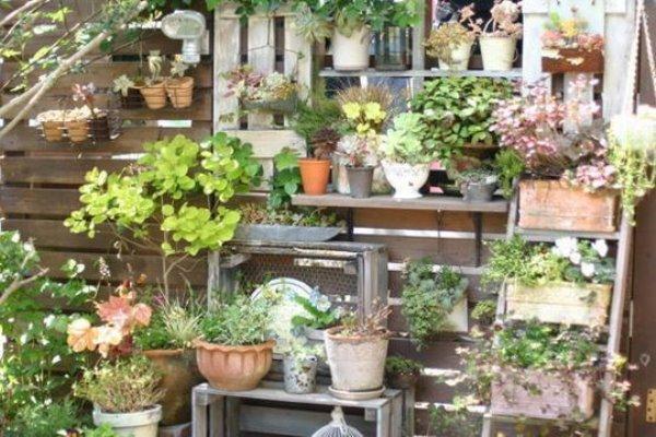 Thiết kế sân vườn theo phong cách Nhật Bản
