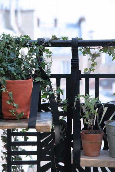 Trang trí chậu cây cho sân vườn thêm sinh động