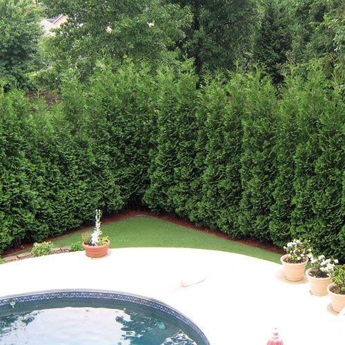 Chia sẽ kinh nghiệm trang trí sân vườn vừa thoáng mát vừa thơ mộng