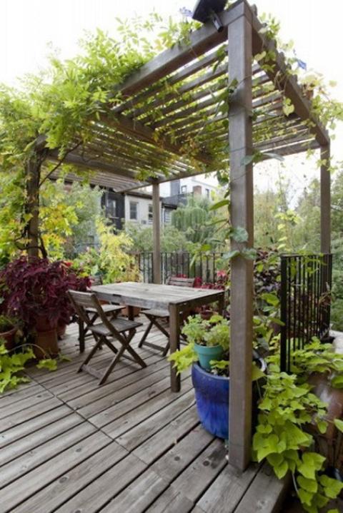 Bí quyết thiết kế sân vườn nhà bạn theo phong cách Patio
