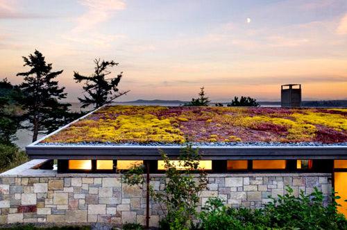 Ý tưởng độc đáo khi thiết kế vườn trên mái nhà