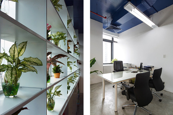 Tìm hiểu cách để thiết kế văn phòng tránh nắng và có cây xanh xung  quanh