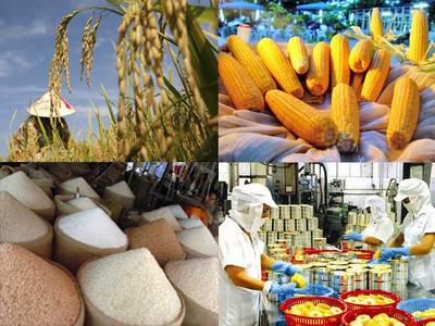 Nâng cao kim ngạch xuất khẩu nông sản