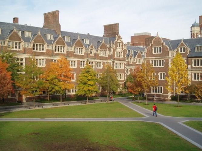 Học ở đâu để nhận lương tiền tỷ khi đã tốt nghiệp